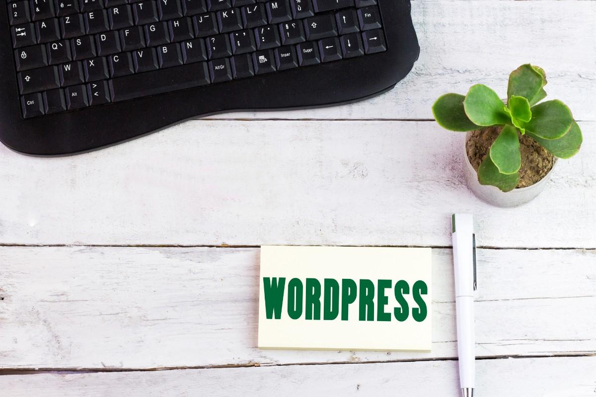 wordpress ilustrasi